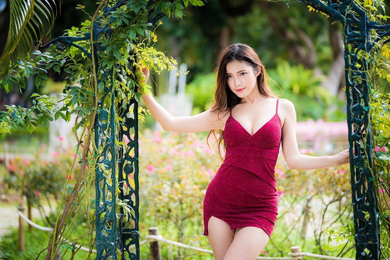 Картинки шатенки Поза девушка азиатки Платье Шатенка позирует Девушки молодые женщины молодая женщина Азиаты азиатка платья