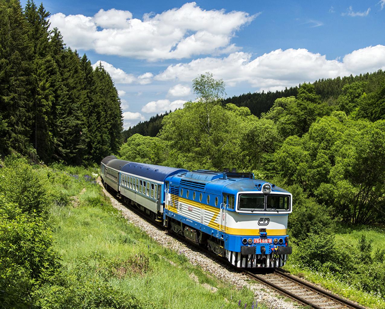 Обои для рабочего стола Чехия Природа Поезда Железные дороги дерево дерева Деревья деревьев