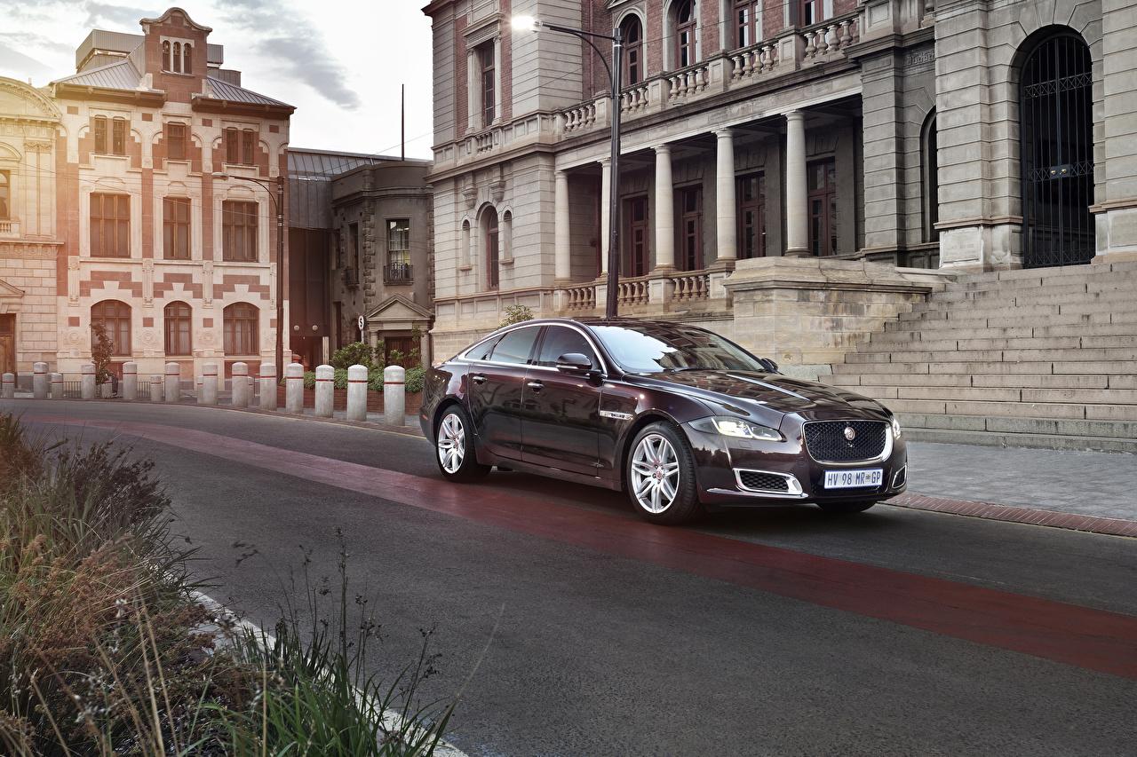 Обои для рабочего стола Ягуар 2019 XJ50 бордовая машина Металлик Jaguar Бордовый бордовые темно красный авто машины автомобиль Автомобили