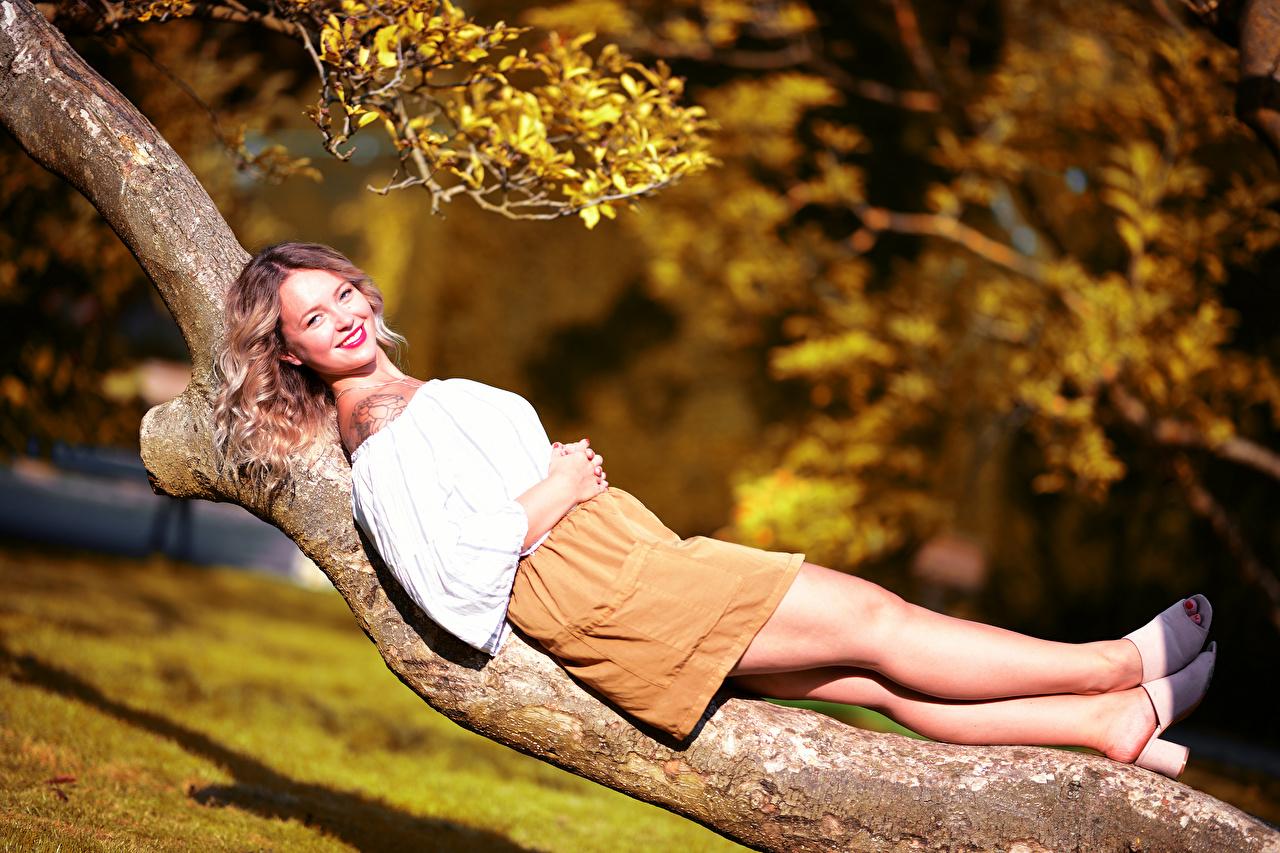 Картинки Юбка Улыбка Лежит боке Блузка молодые женщины ног Ствол дерева смотрит юбки юбке улыбается лежа лежат лежачие Размытый фон девушка Девушки молодая женщина Ноги Взгляд смотрят