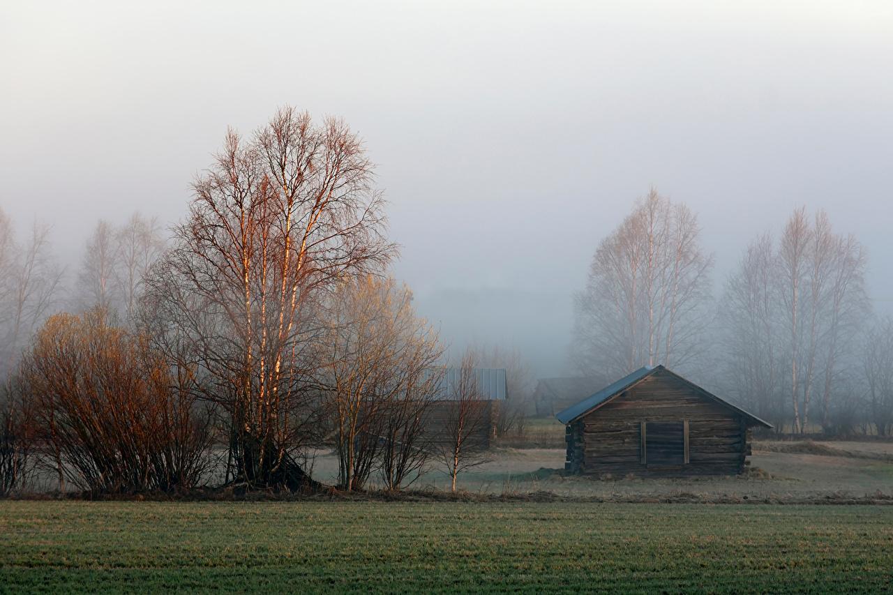 Обои для рабочего стола Лапландия область Швеция поселок Övertorneå тумана Природа Здания дерево село Деревня Туман тумане Дома дерева Деревья деревьев