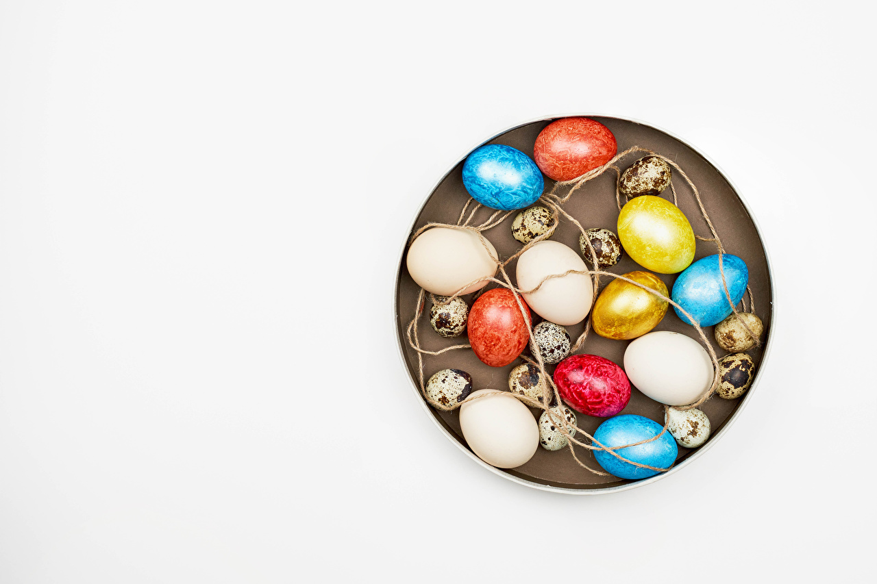 Фотографии Пасха Разноцветные яйцо цветок Шаблон поздравительной открытки белым фоном яиц Яйца яйцами Цветы Белый фон белом фоне