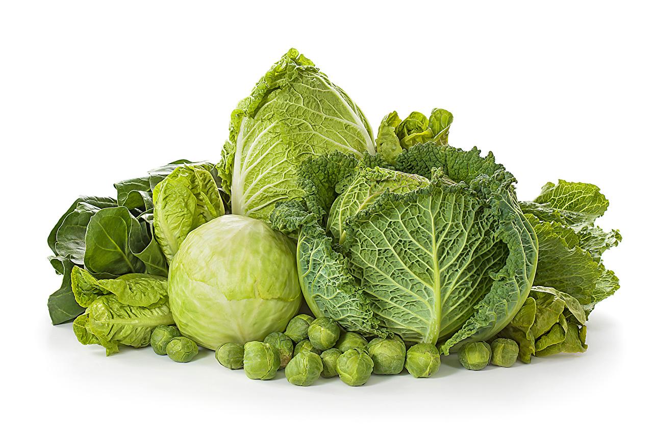 Фотографии Капуста Еда Овощи Пища Продукты питания