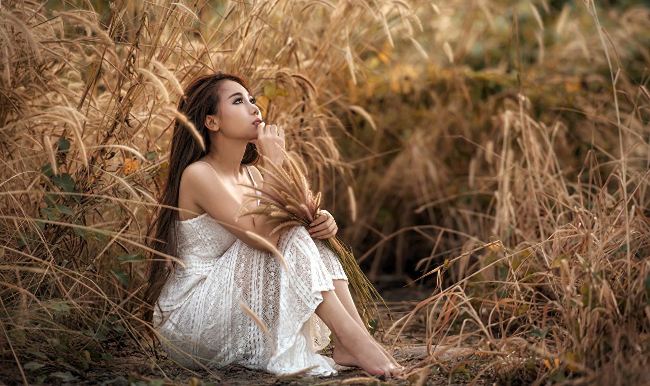 Фотографии шатенки девушка азиатки Руки Трава сидящие Платье Шатенка Девушки молодая женщина молодые женщины Азиаты азиатка сидя рука траве Сидит платья