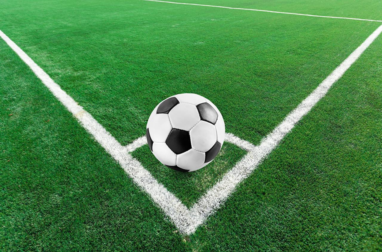 Картинки Спорт Футбол Мяч газоне спортивный спортивная спортивные Мячик Газон