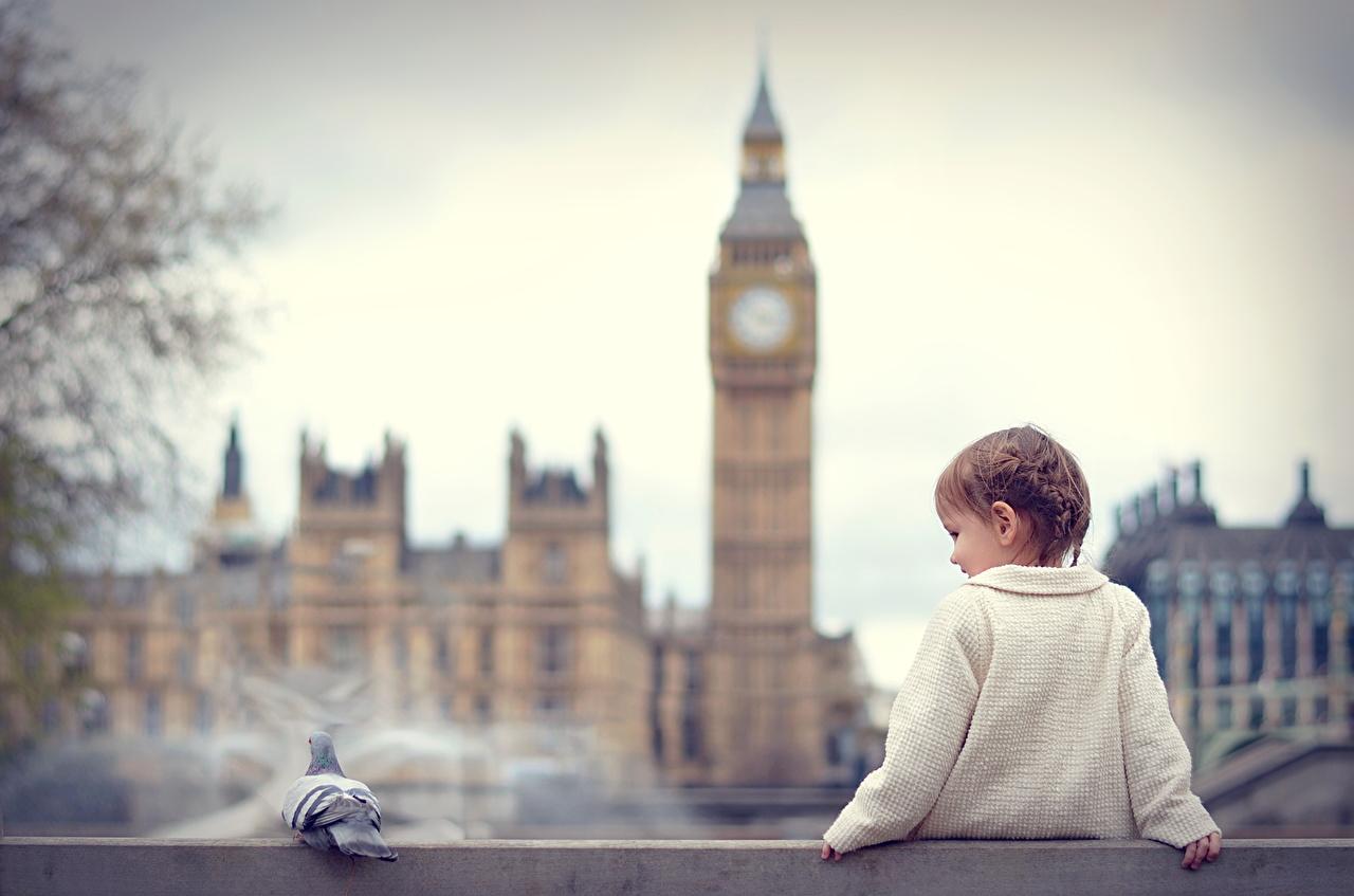 Фото Лондон Биг-Бен Девочки Англия Дети сидя девочка лондоне ребёнок Сидит сидящие