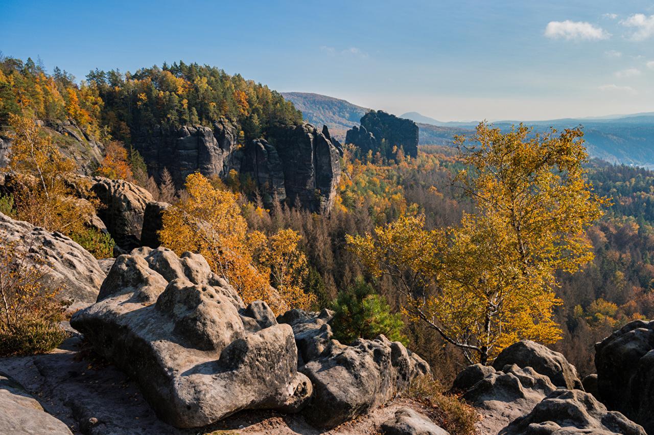 Фотография Германия Saxony Горы Скала осенние Природа дерева Утес гора Осень скале скалы дерево Деревья деревьев