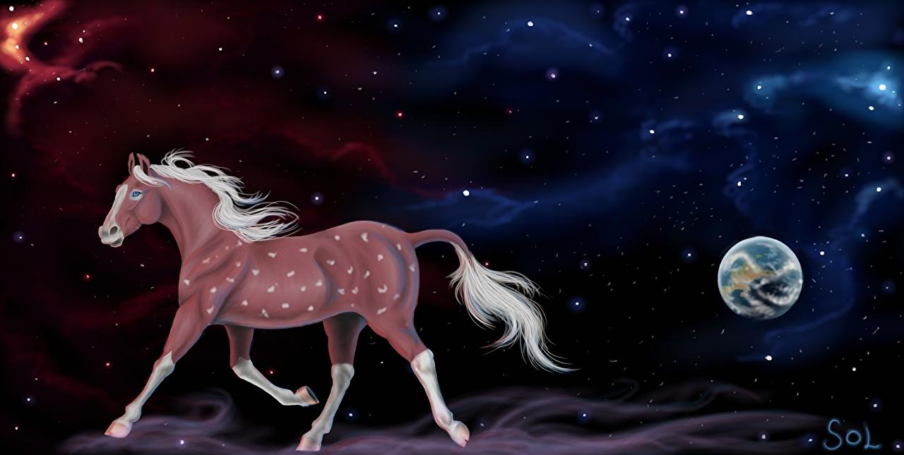 Фотографии Лошади Ночные Животные Рисованные лошадь Ночь ночью в ночи животное