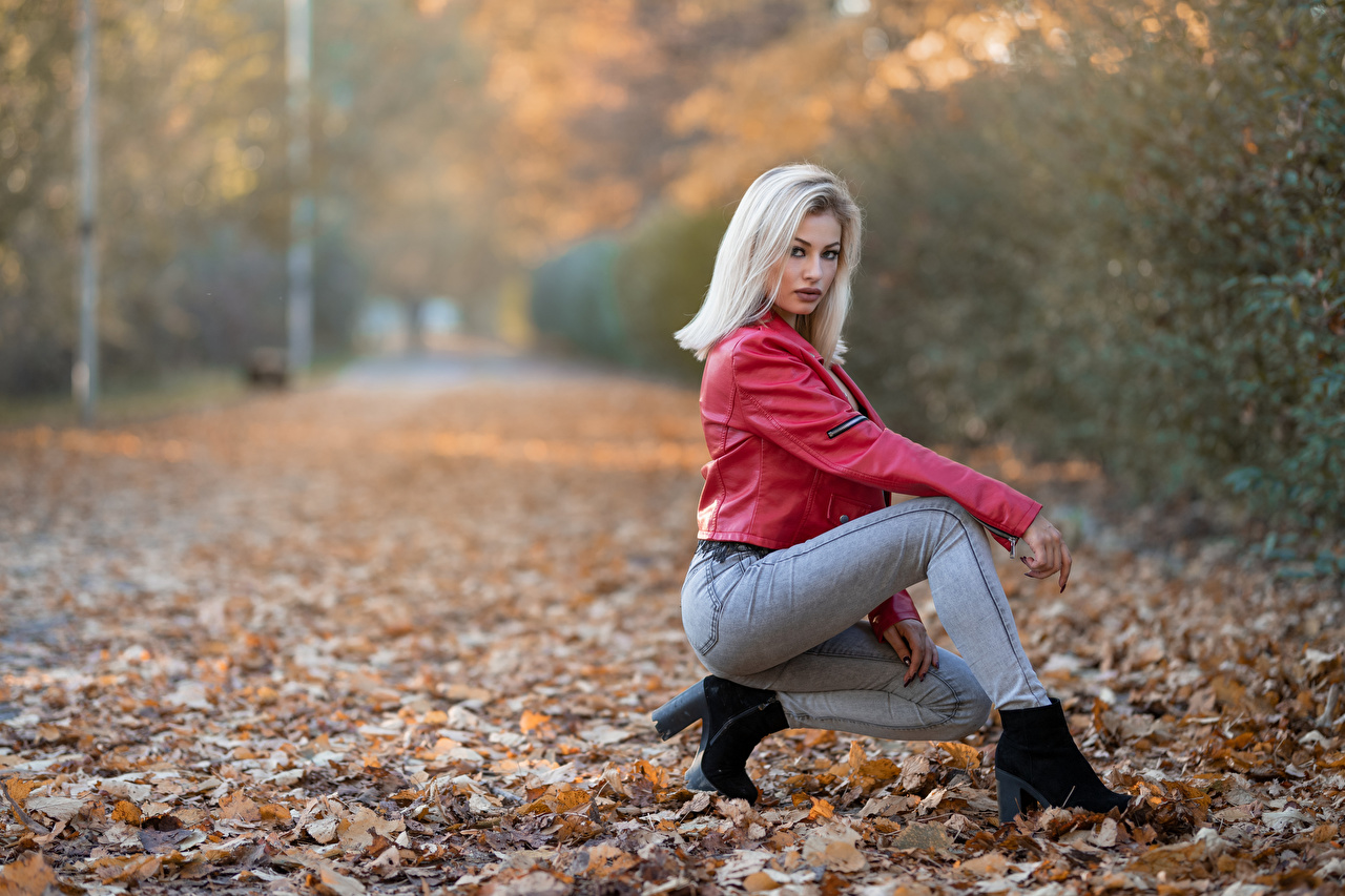 Фото Листья блондинки Alessandra позирует Осень куртки молодая женщина Джинсы смотрят лист Листва Блондинка блондинок Поза куртке Куртка осенние куртках девушка Девушки молодые женщины джинсов Взгляд смотрит