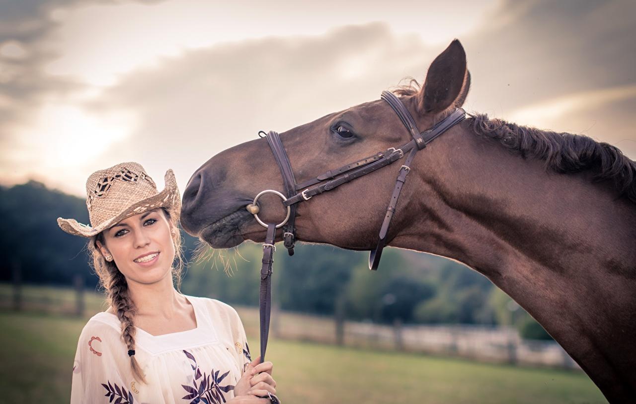 Фото Лошади шляпы молодая женщина головы Животные лошадь Шляпа шляпе Девушки девушка молодые женщины Голова животное