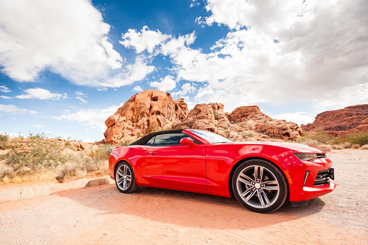Фотографии Шевроле Camaro кабриолета Красный Сбоку машина Chevrolet Кабриолет красная красные красных авто машины Автомобили автомобиль
