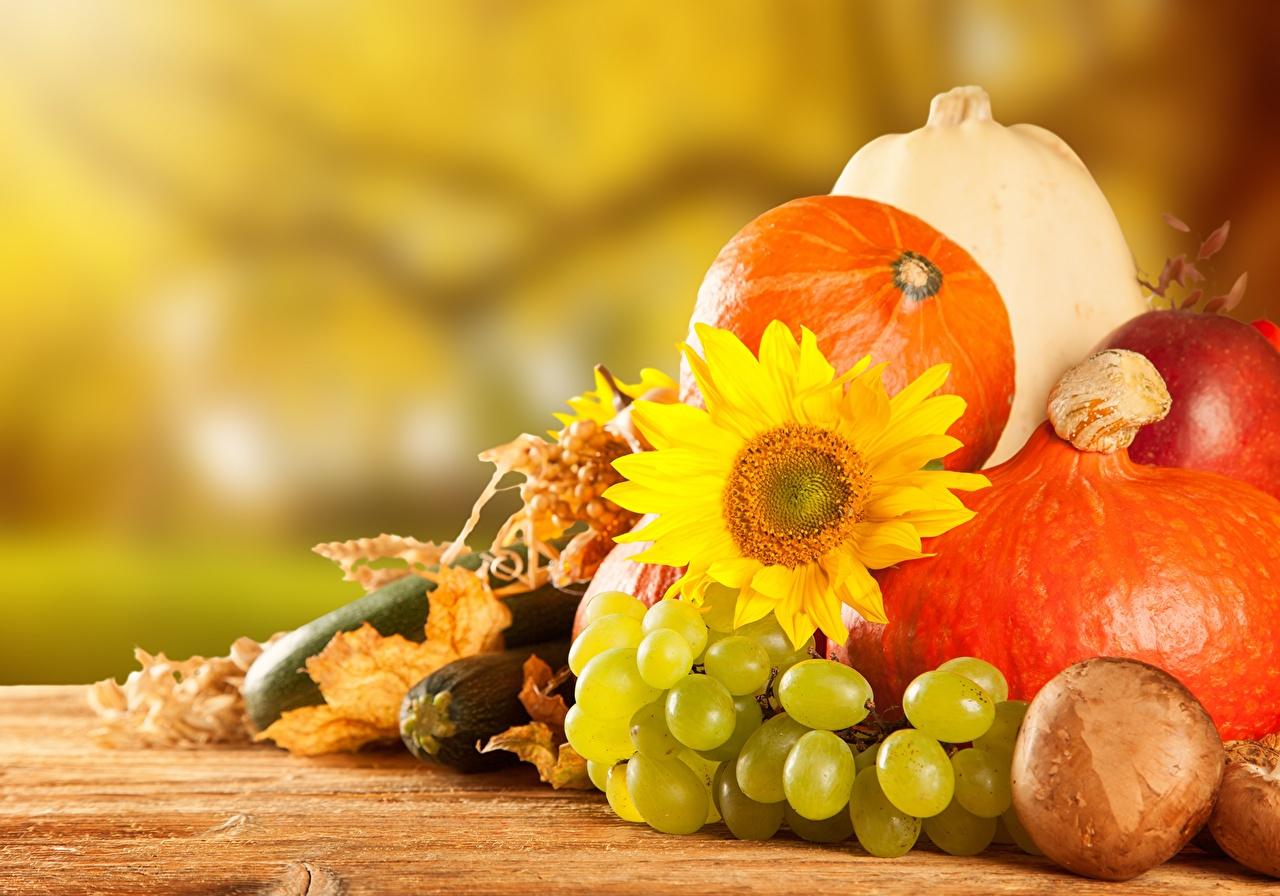 обои на рабочий стол овощи фрукты осень 15484