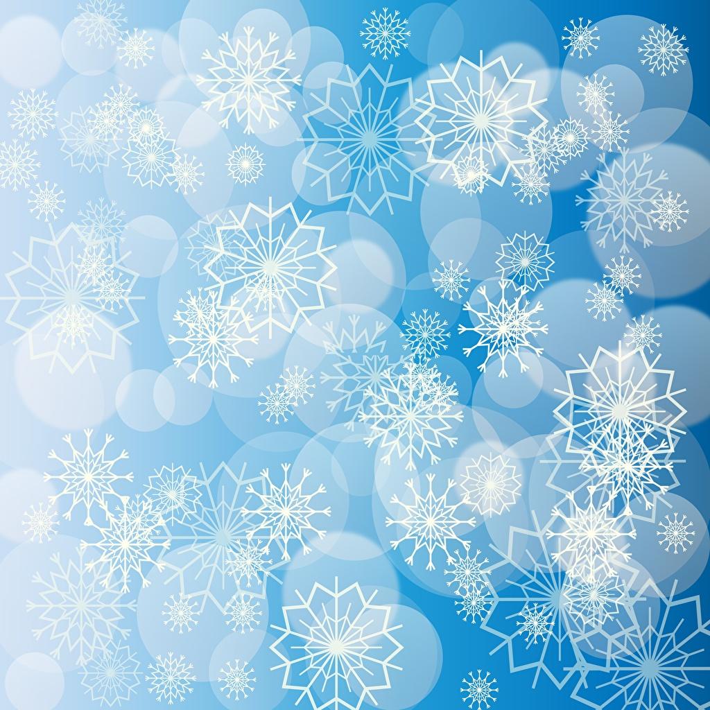 Картинка Текстура орнамент снежинка Узоры Снежинки