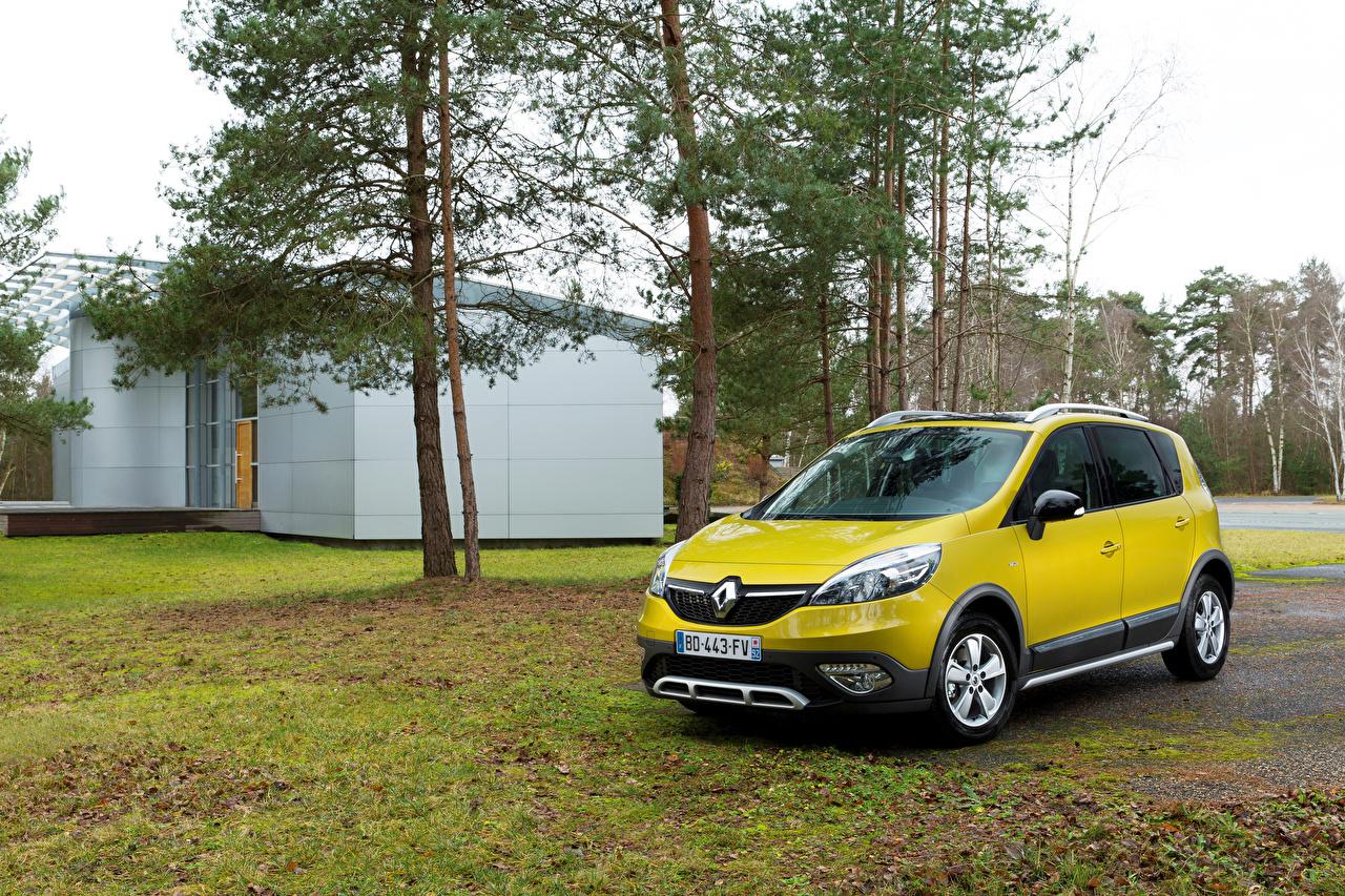Фото Renault 2013 Scenic XMOD желтые машины Рено желтых Желтый желтая авто машина автомобиль Автомобили