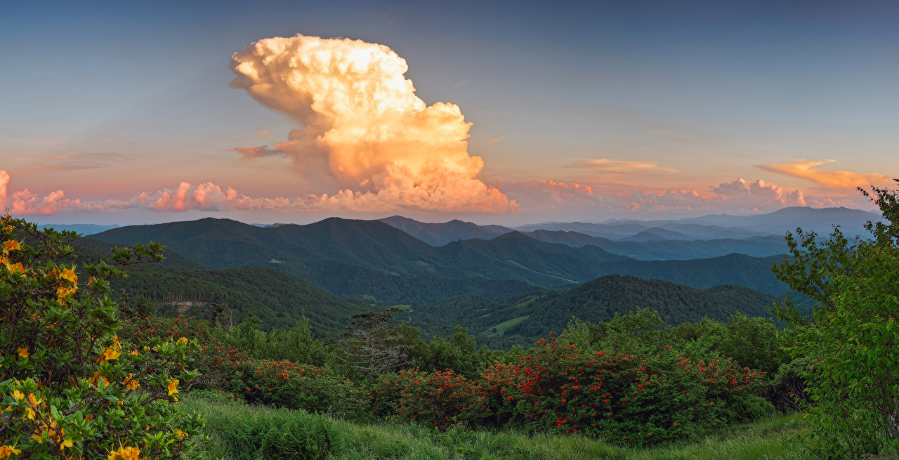 Фото америка Avery North Carolina Горы Природа лес Рассветы и закаты кустов облачно США штаты гора Леса рассвет и закат Кусты облако Облака