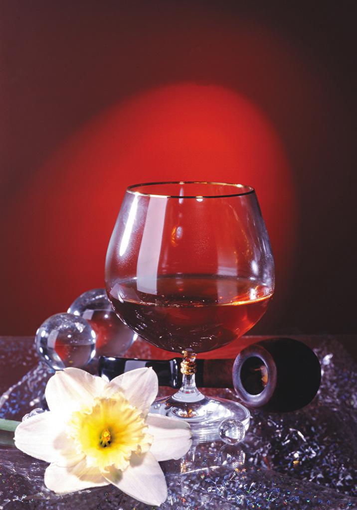 Фото Алкогольные напитки Нарциссы Пища бокал  для мобильного телефона Еда Бокалы Продукты питания