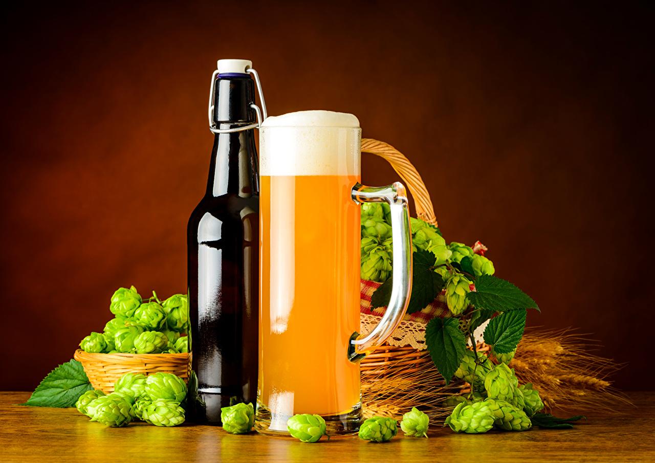 Картинки Пиво Хмель Еда Пена Кружка бутылки пене Пища пеной кружке кружки Бутылка Продукты питания