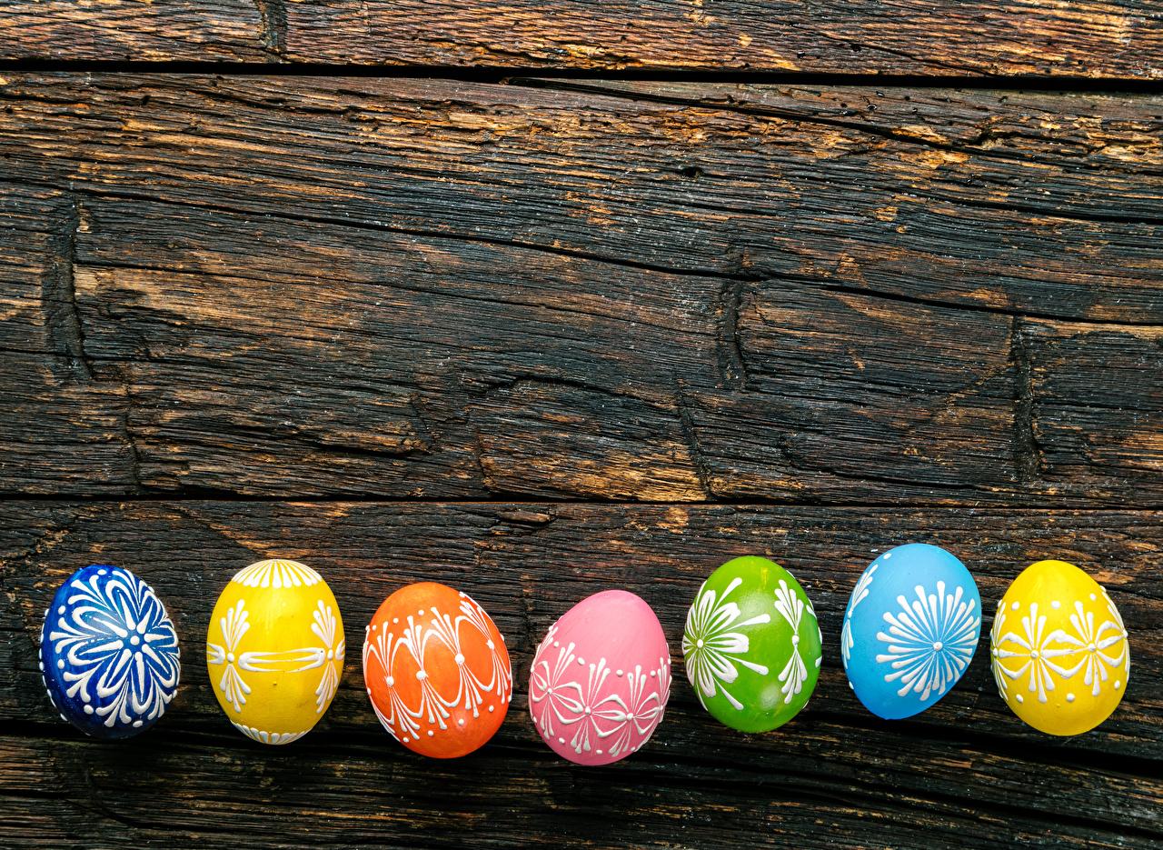 Фото Пасха Разноцветные яйцами Доски дизайна яиц Яйца яйцо Дизайн