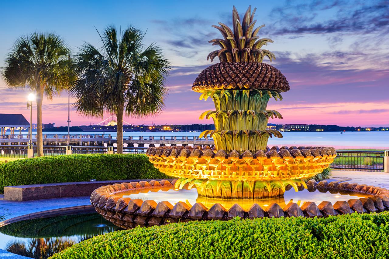 Фото америка Фонтаны Charleston Pineapple Fountain Пальмы Вечер город дизайна США штаты пальм пальма Города Дизайн