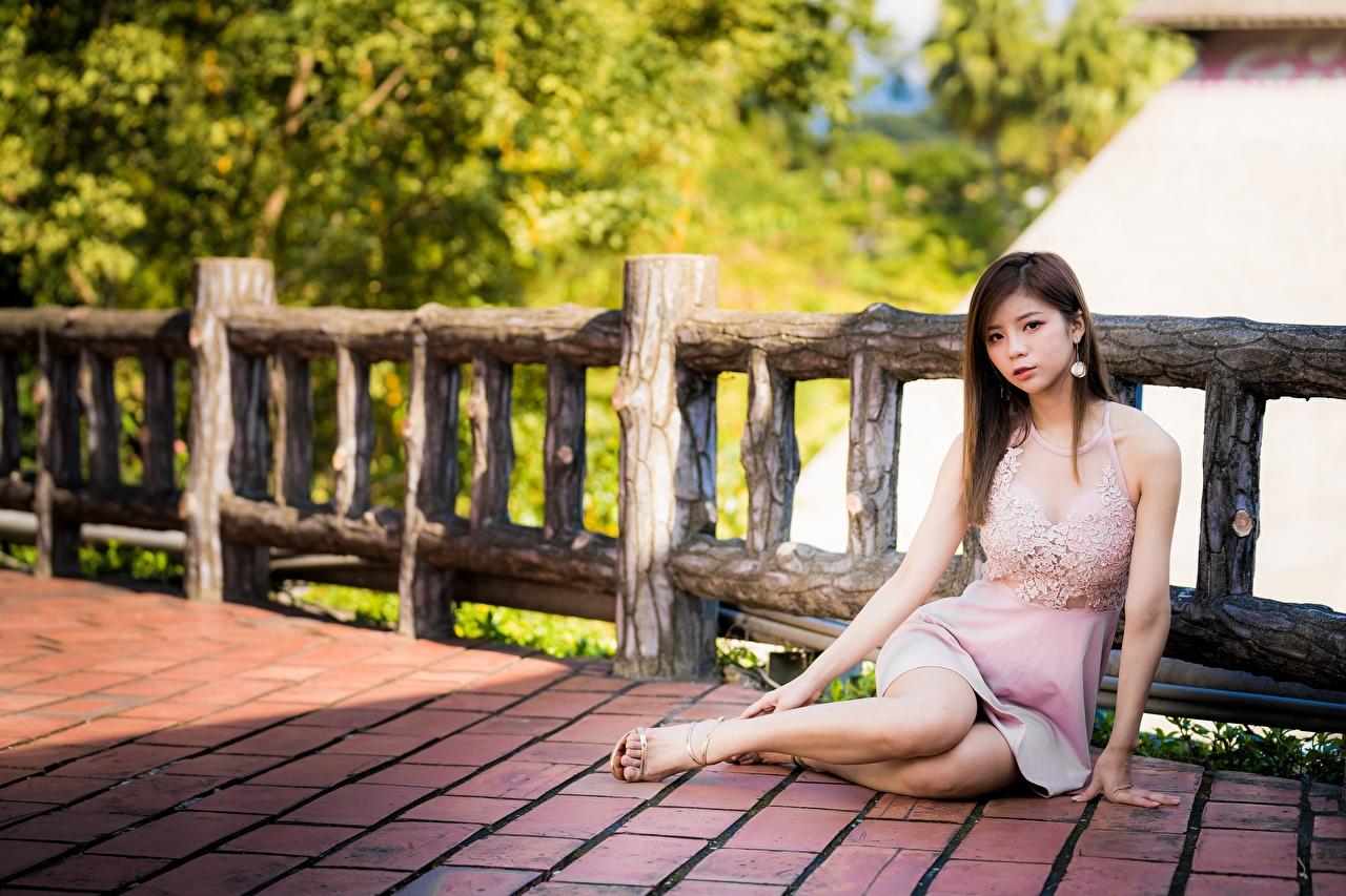Фото шатенки молодая женщина Ноги забора азиатки Руки Сидит платья Шатенка девушка Девушки молодые женщины ног Забор Азиаты ограда азиатка забором рука сидя сидящие Платье