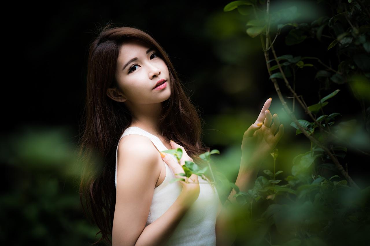 Картинки брюнеток Размытый фон Девушки азиатка рука ветвь Взгляд брюнетки Брюнетка боке девушка молодая женщина молодые женщины Азиаты азиатки Руки Ветки ветка на ветке смотрит смотрят