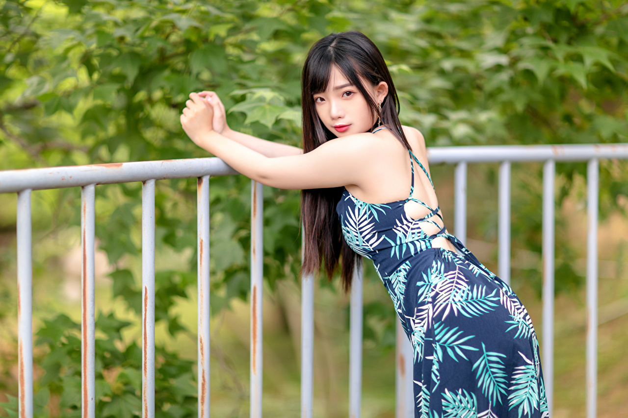 Картинки боке позирует Девушки Забор азиатки Руки смотрит Платье Размытый фон Поза девушка молодые женщины молодая женщина забора Азиаты ограда азиатка забором рука Взгляд смотрят платья