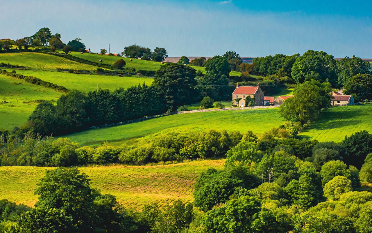 Фото Англия North York Moors National Park Природа парк Пейзаж Здания Деревья Парки Дома дерево дерева деревьев