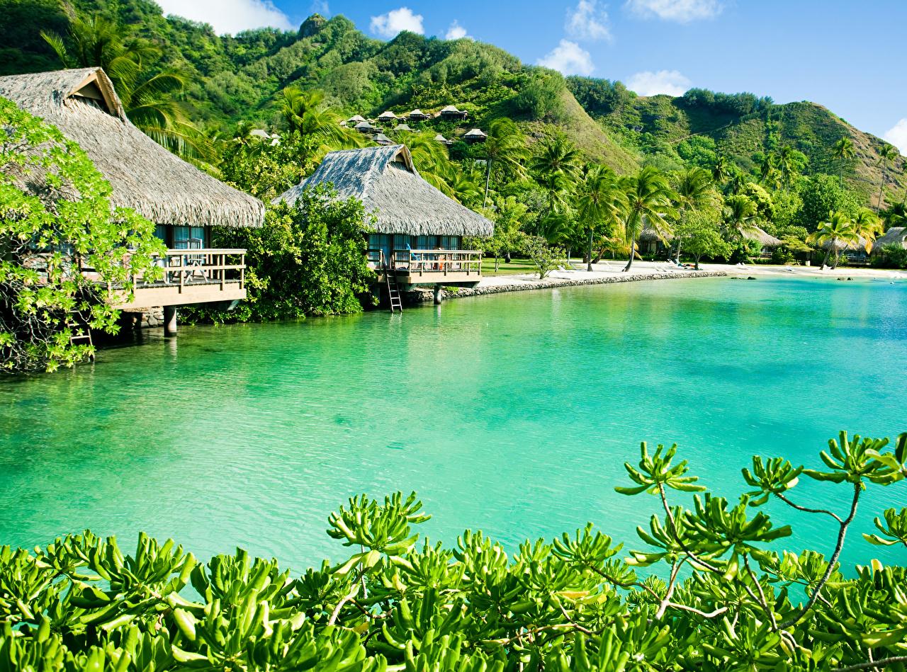 Фотографии Caribbean Природа Холмы Тропики берег Здания Побережье Дома