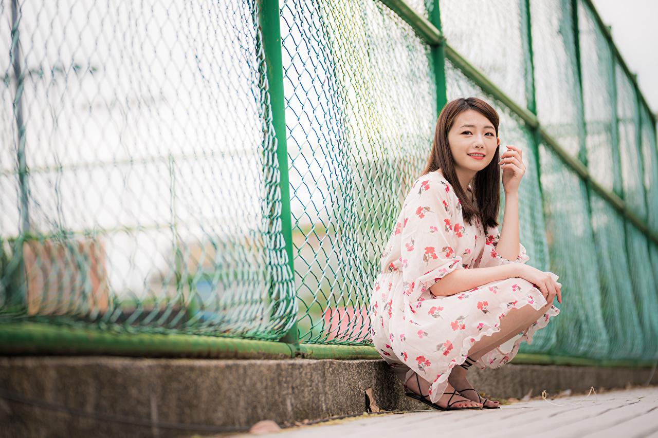 Картинки Девушки ограда Азиаты сидя Взгляд платья девушка молодые женщины молодая женщина Забор забора забором азиатки азиатка Сидит сидящие смотрят смотрит Платье