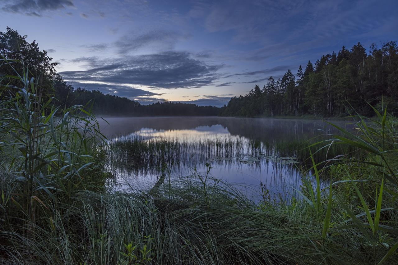 Картинки Норвегия Strengsdalsvannet Природа Озеро Вечер