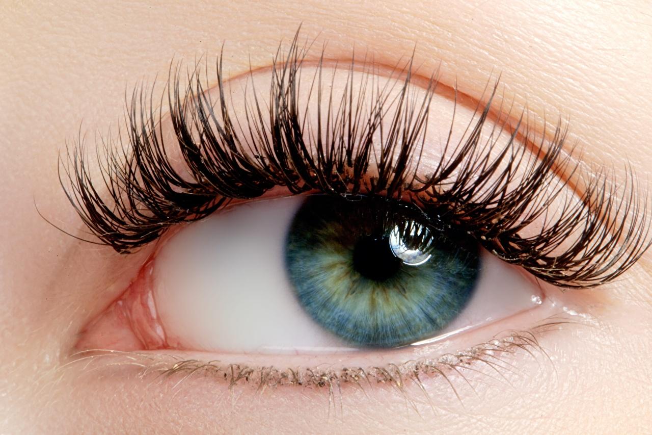 Фото Глаза ресницы молодые женщины смотрит Крупным планом Ресница девушка Девушки молодая женщина вблизи Взгляд смотрят