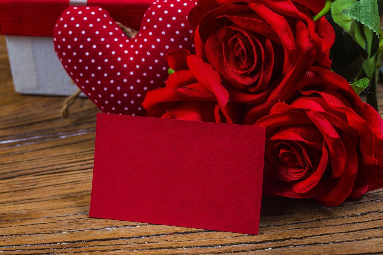 Картинки День святого Валентина Розы Цветы Шаблон поздравительной открытки День всех влюблённых роза цветок