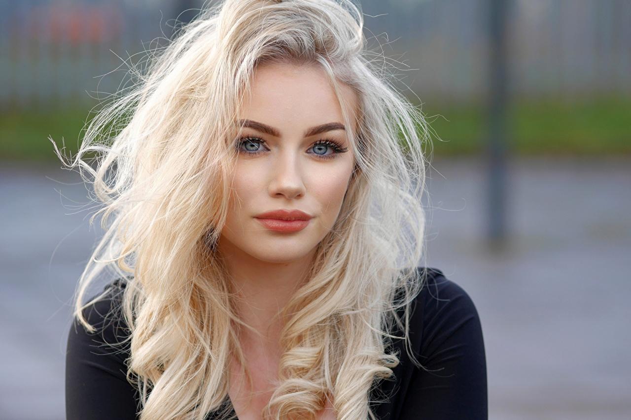 Фотографии блондинок мейкап боке волос Девушки смотрит блондинки Блондинка Макияж косметика на лице Размытый фон Волосы девушка молодая женщина молодые женщины Взгляд смотрят