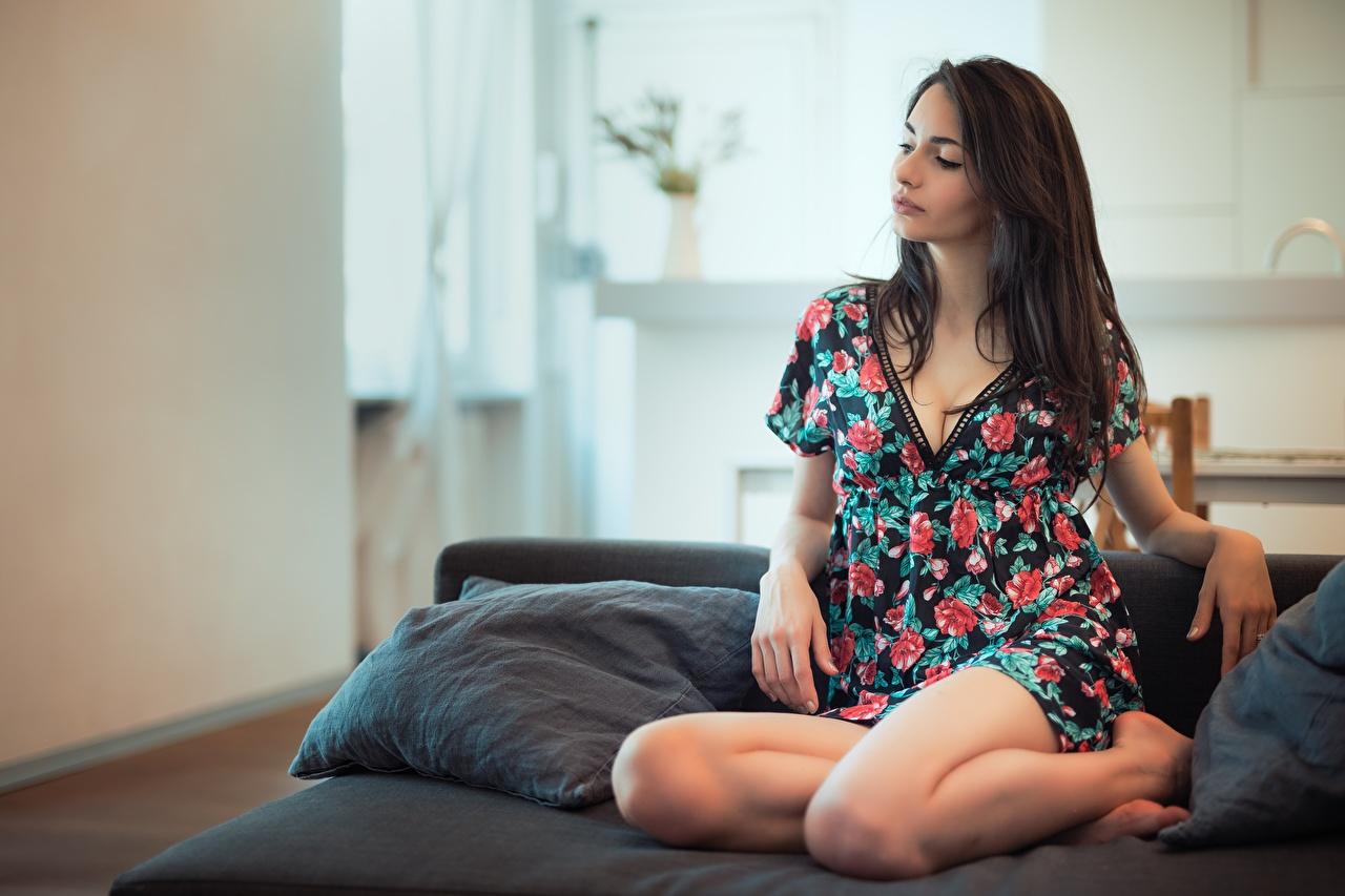 Картинки Шатенка Nicole Pasquale, Luigi Malanetto молодые женщины Ноги Руки диване платья шатенки девушка Девушки молодая женщина ног рука Диван Платье