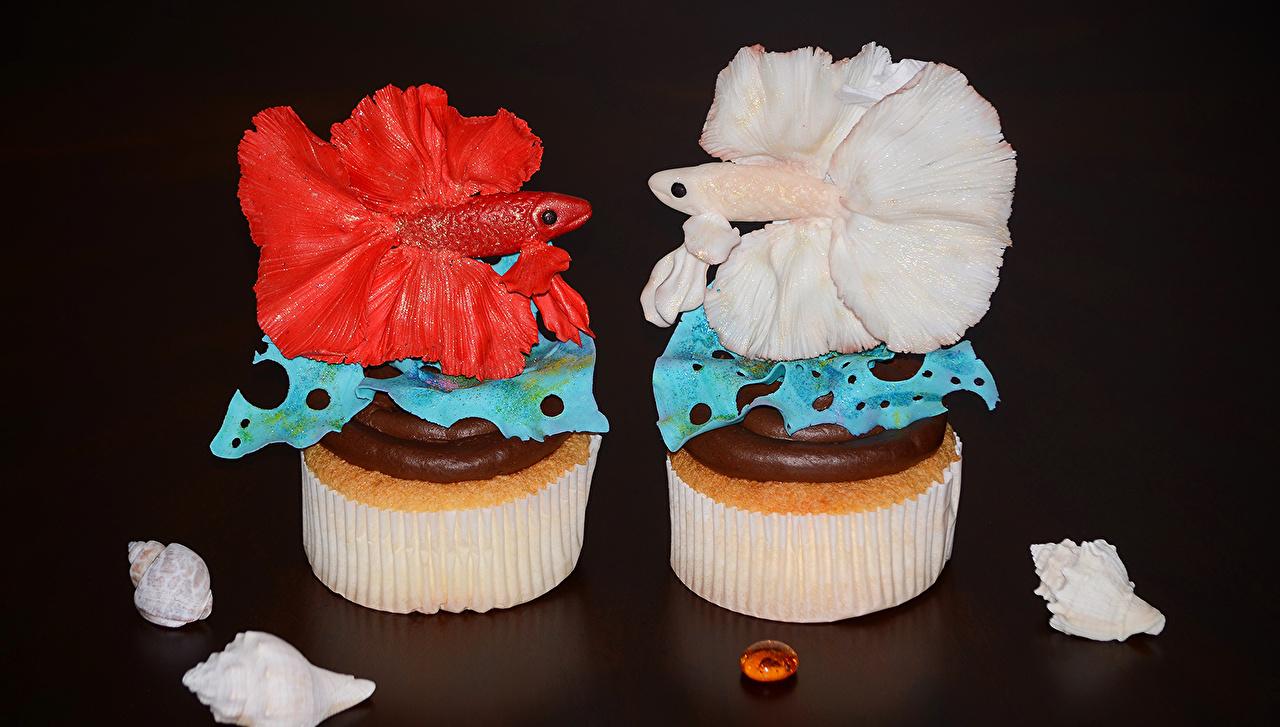 Фотографии Рыбы Двое Еда Пирожное Сладости Дизайн 2 два две вдвоем Пища Продукты питания сладкая еда дизайна