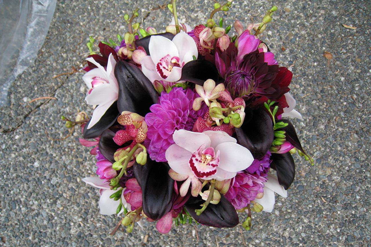 Фотография Букеты Орхидеи белокрыльник цветок букет Каллы орхидея Цветы