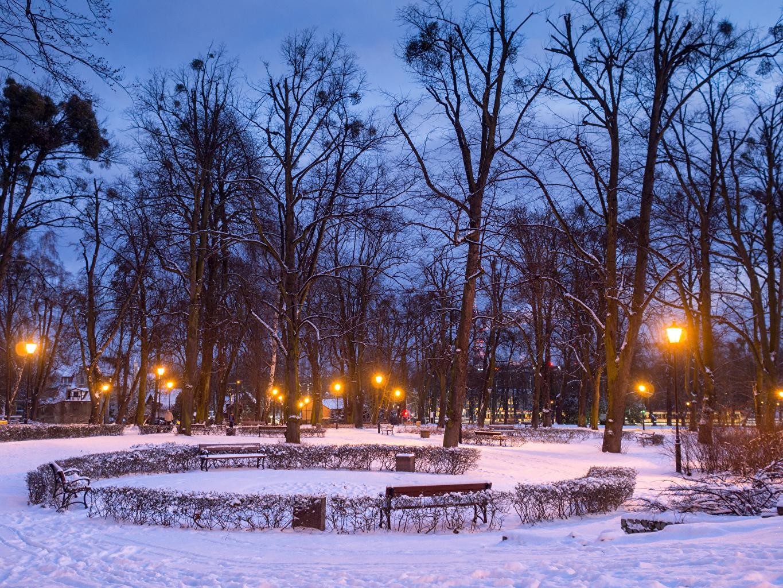 Картинки Гданьск Польша зимние Природа Парки Вечер Скамейка Уличные фонари дерева Зима Скамья дерево Деревья деревьев