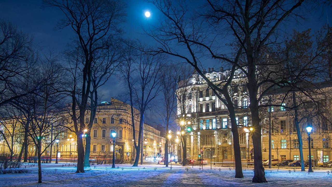 Обои для рабочего стола Санкт-Петербург Россия Nevsky Prospect Зима Улица Ночь Города деревьев зимние улиц улице ночью в ночи Ночные город дерева дерево Деревья
