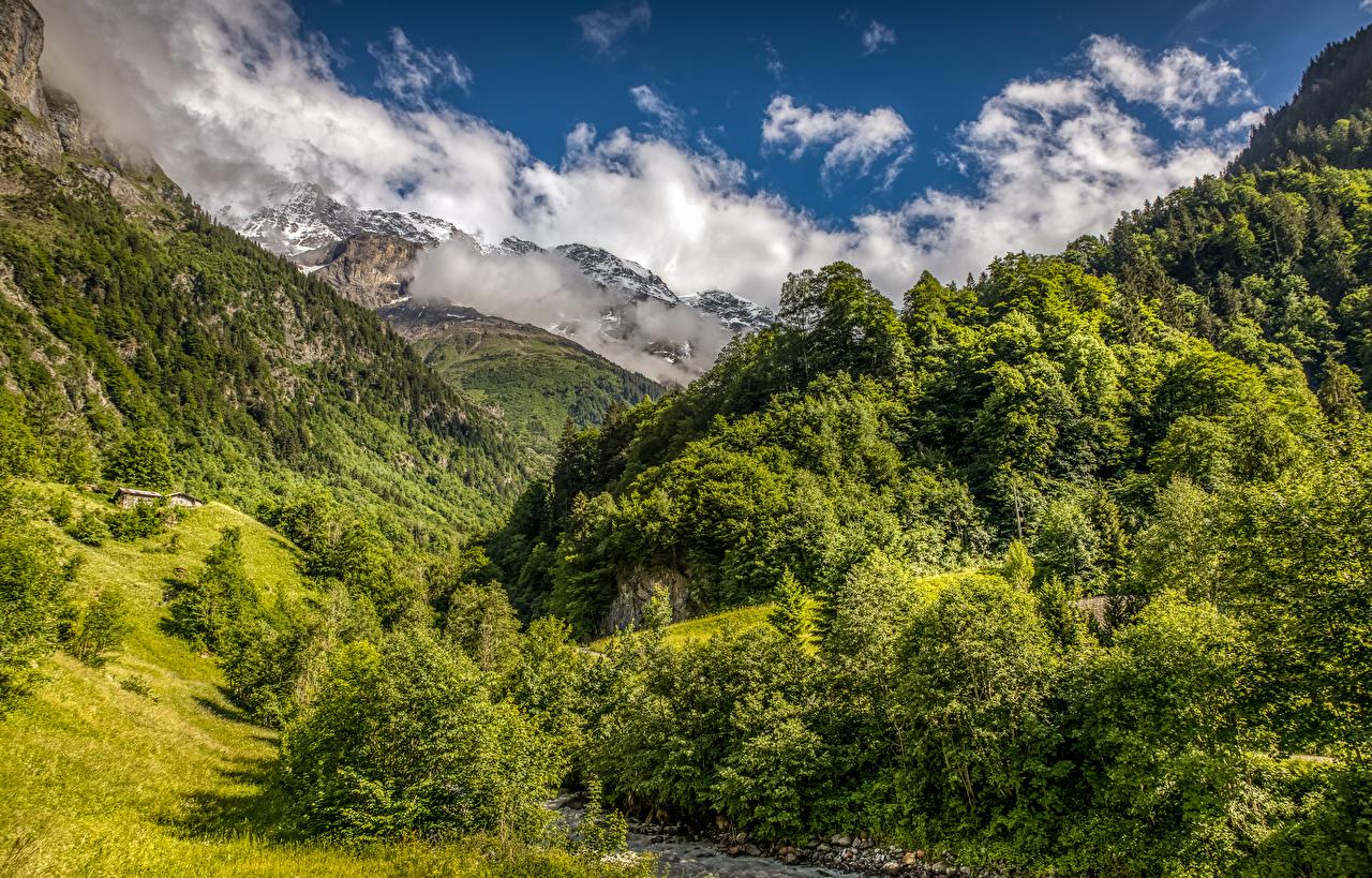 Фото Швейцария гора Природа лес Пейзаж Горы Леса