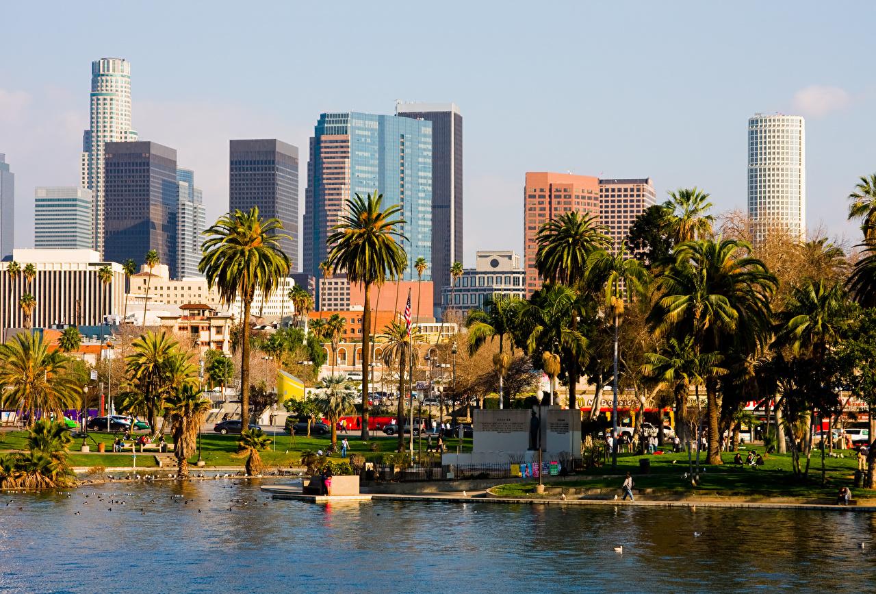 Картинка калифорнии Лос-Анджелес штаты пальм Здания Города Калифорния США америка пальма Пальмы Дома город