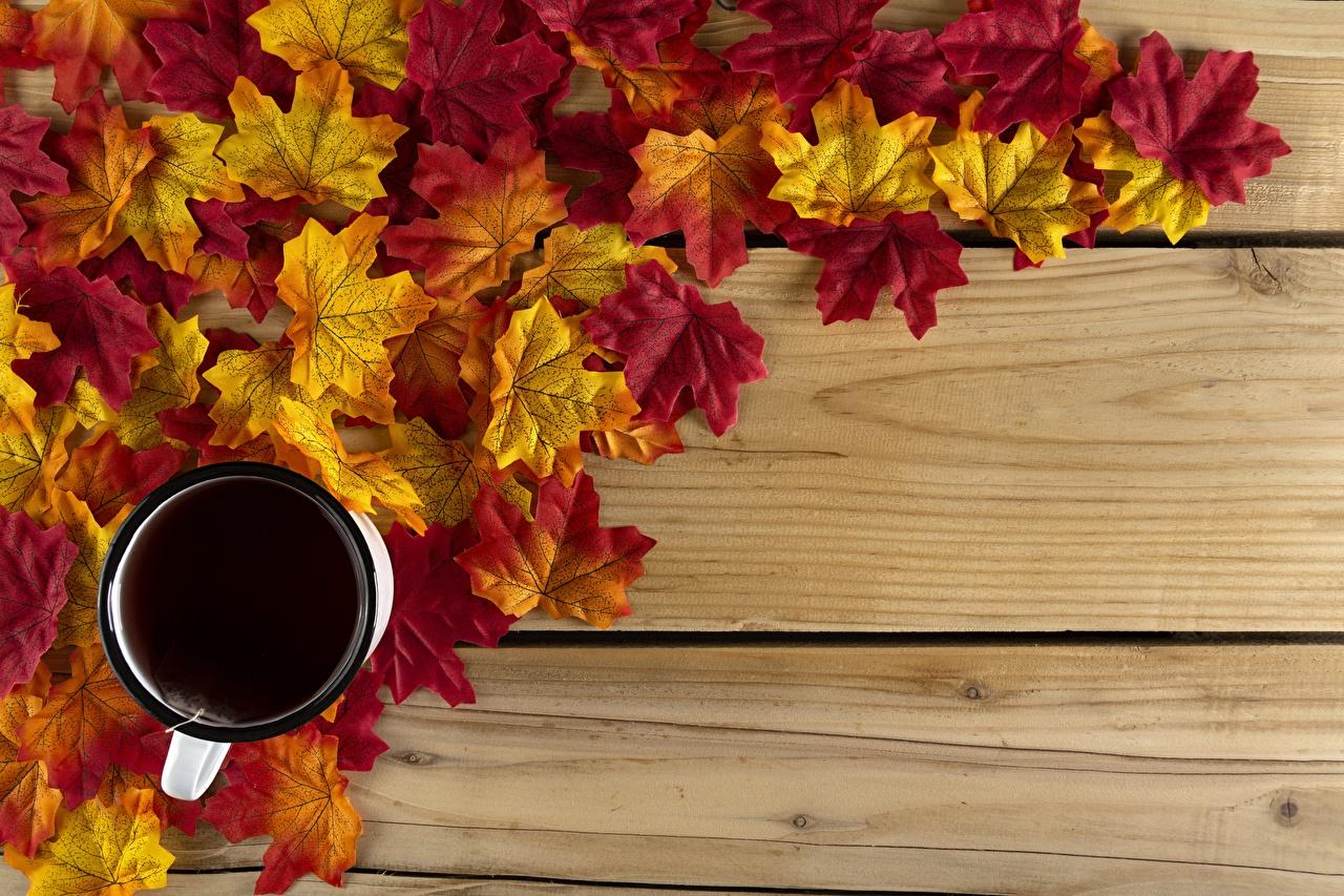 Фото Листья клёновый Чай Осень Еда чашке Шаблон поздравительной открытки Доски лист Листва Клён клёна осенние Пища Чашка Продукты питания