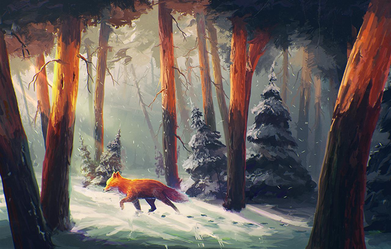 Фото Лисы Зима Фэнтези Природа лес снеге Фантастический мир Лисица зимние Фантастика Леса Снег снега снегу