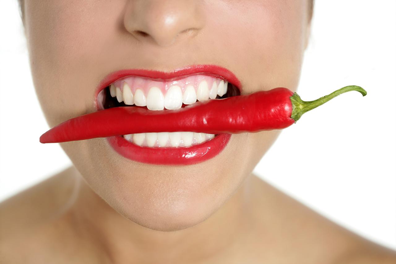 Фото Девушки Острый перец чили Зубы вблизи белым фоном Красные губы девушка молодые женщины молодая женщина Белый фон белом фоне Крупным планом красными губами