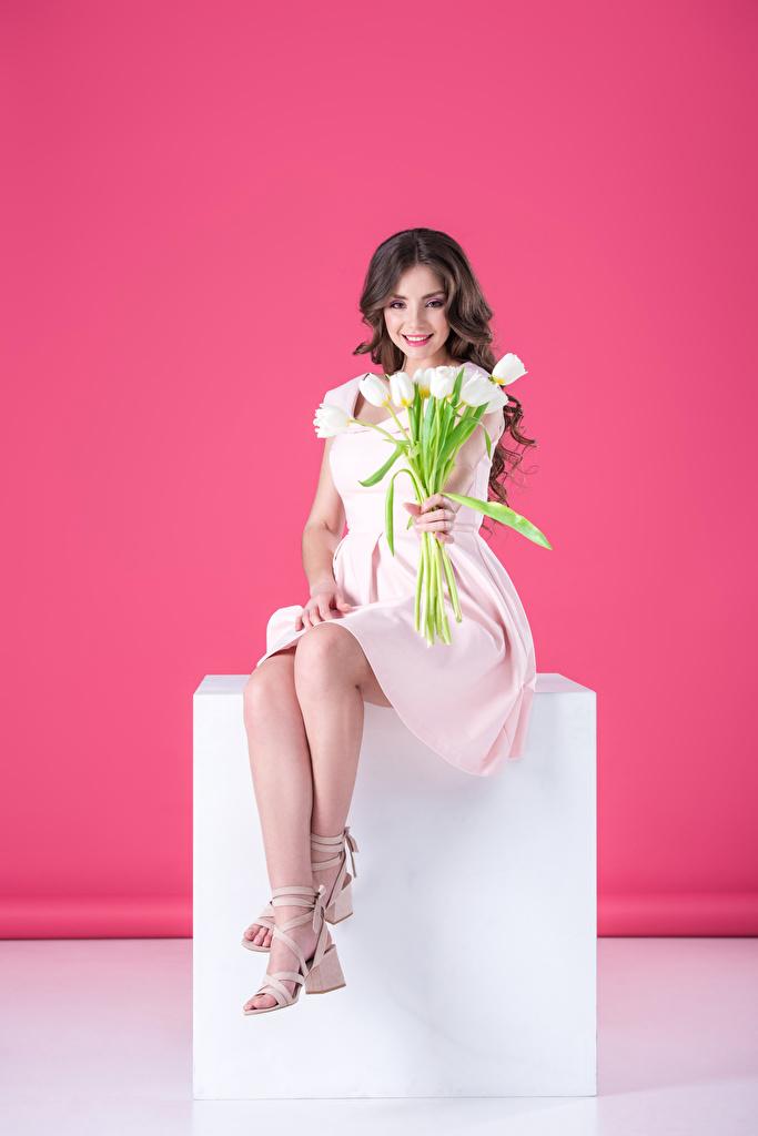 Фото шатенки улыбается Девушки Тюльпаны сидя платья Цветной фон  для мобильного телефона Шатенка Улыбка тюльпан девушка молодые женщины молодая женщина Сидит сидящие Платье