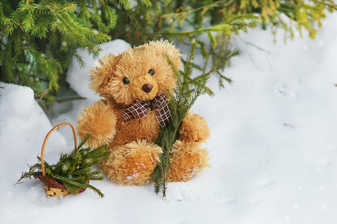 Обои для рабочего стола Зима Снег Мишки корзины зимние снега снегу снеге Корзина Корзинка Плюшевый мишка