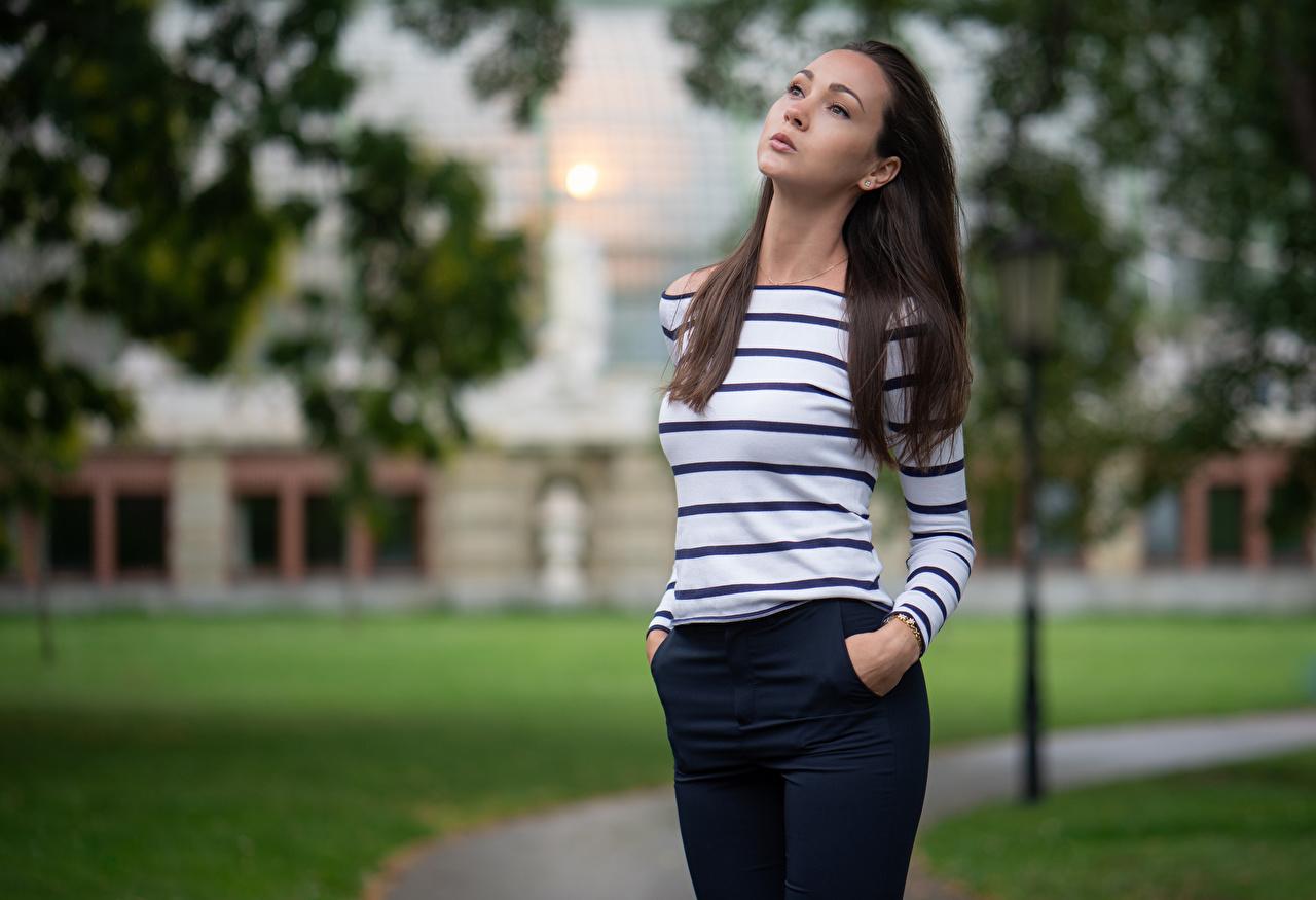 Картинки Размытый фон позирует Девушки свитера Брюки боке Поза девушка молодые женщины молодая женщина Свитер свитере штаны