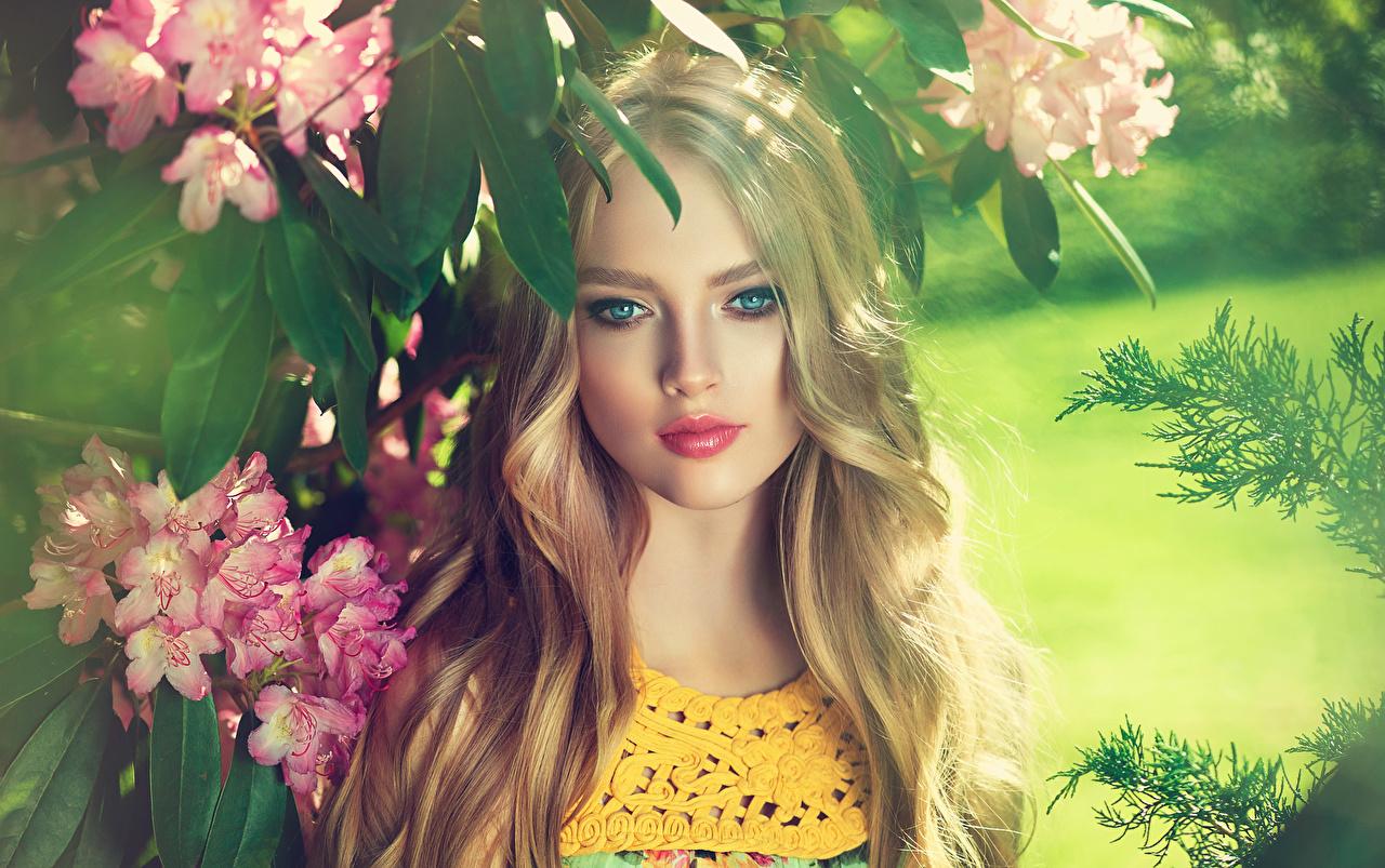 Фотографии блондинки красивый Лицо Девушки Рододендрон смотрят блондинок Блондинка Красивые красивая лица Взгляд смотрит