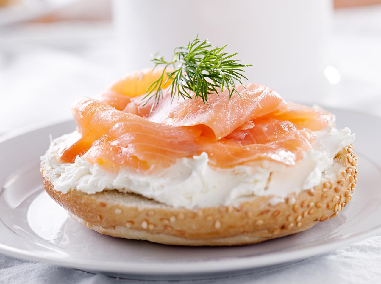 Фото Рыба Укроп Булочки бутерброд Еда Бутерброды Пища Продукты питания