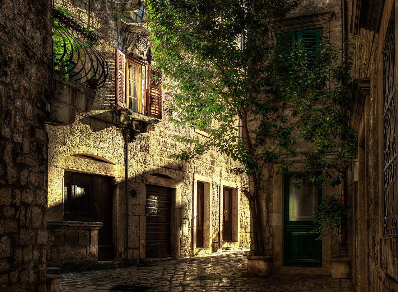 Хорватия Дома Hvar Улица Деревья Здания Города