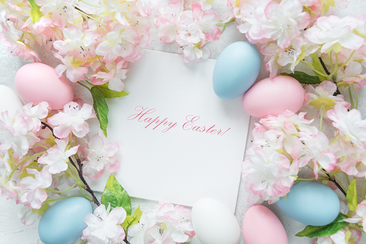 Фотографии Пасха Английский яиц Слово - Надпись английская инглийские яйцо Яйца яйцами слова текст